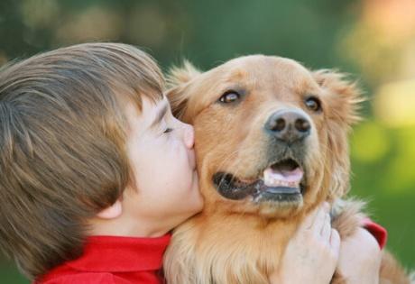 niño-perro